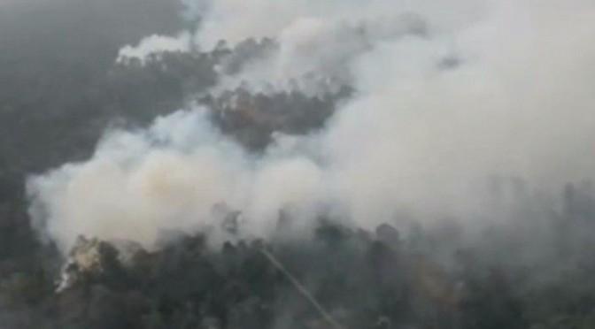 Indonesien: Verheerende Feuer zerstören Wälder