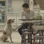 Thai Insurance Video