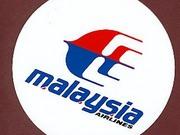 MH17: Untersuchungen werden wieder aufgenommen