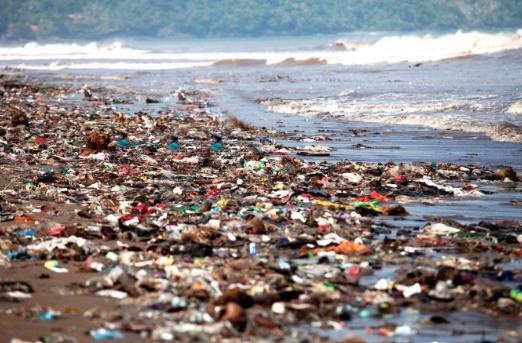 Zu viel Plastikmüll in Balis Unterwasserwelt